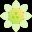 004-sunflower